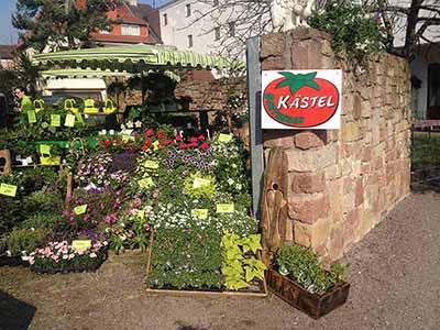 Obst- und Gemüsemarkt Kästel GbR