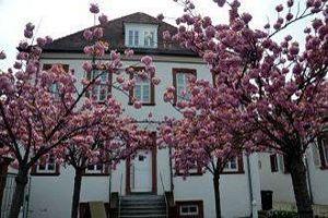 Museum für Weinbau- und Stadtgeschichte
